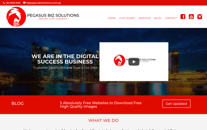 Pegasus Biz Solutions | Digital Marketing and Web Development Company
